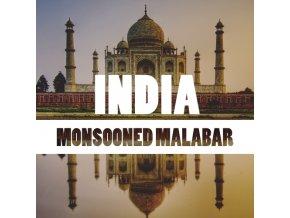 IndiaMonsoonedMalabar